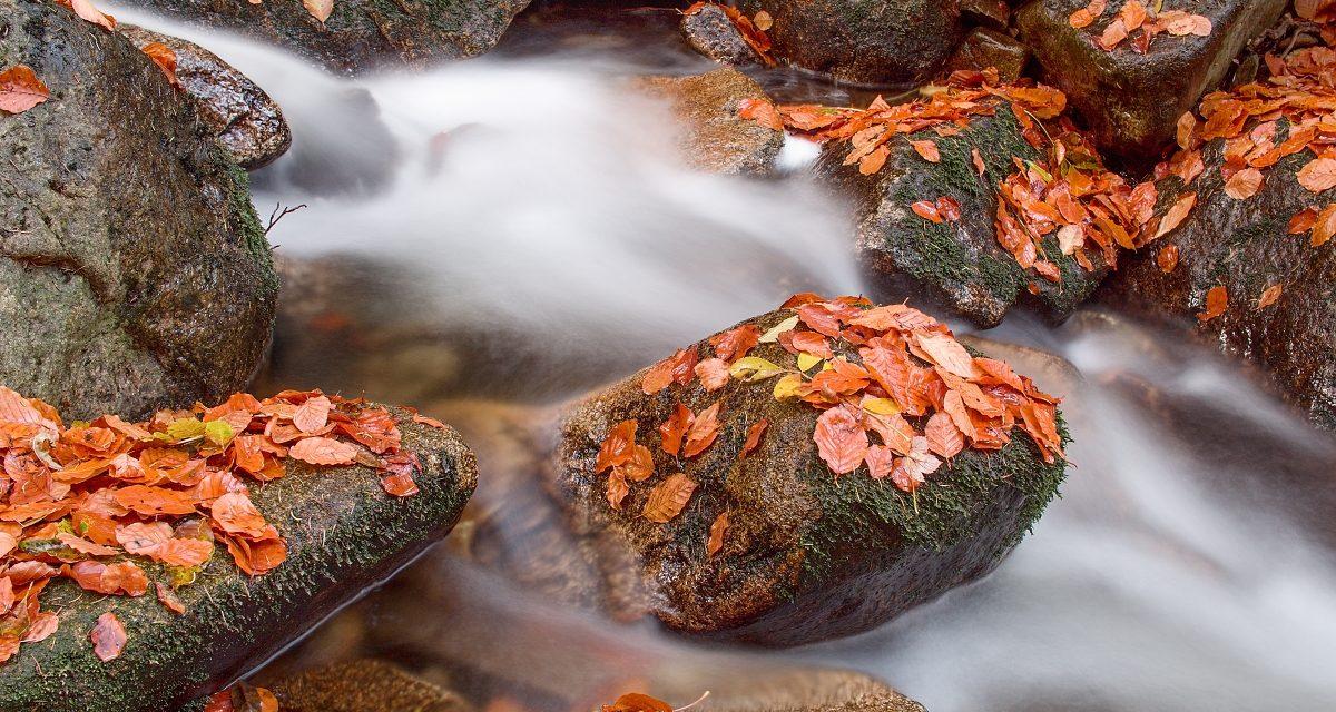 Wie fotografiere ich fließendes Wasser mit Hilfe eines ND-Filter?